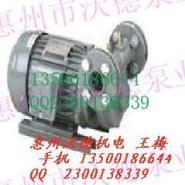 TG-90锅炉泵图片