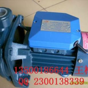 220V清水泵图片