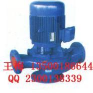 立式管道污水泵图片