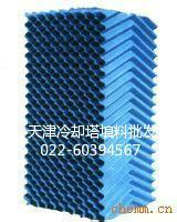 供应蓟县玻璃钢填料,点波填料,六角蜂窝填料,喷头