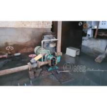 供应压滤机配套转子泵-自吸排污泵