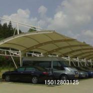 珠海市膜结构汽车棚图片