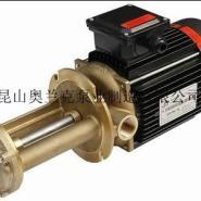 立式高温泵图片