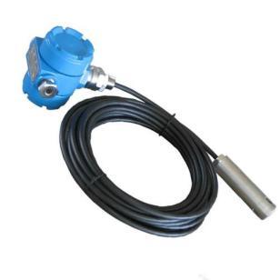 DLKH19投入式液位变送器出厂价图片