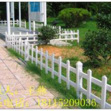 菏泽pvc草坪护栏、山东塑钢花坛栏杆照片、绿化栅栏价格图片