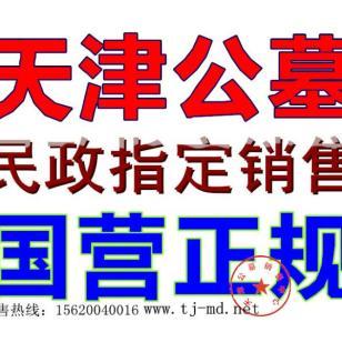 天津墓地网图片