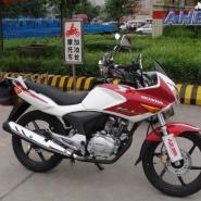 供应新大洲本田战鹰CBF150 本田摩托车150跑车价格