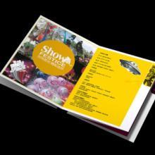 郑州画册设计印刷价格表