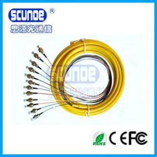 FC12芯束状尾纤图片