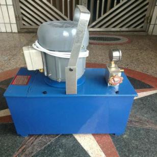 国浦100kg电动运水机试压泵图片