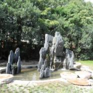 上海浦东新区哪里的山水盆景最便宜图片