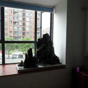 上海假山盆景价格图片