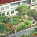 供应上海宝山区哪里的别墅绿化最便宜,上海宝山区别墅绿化价格优惠上海宝