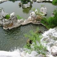江苏上海哪里的假山水池最好图片