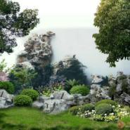 上海别墅绿化图片