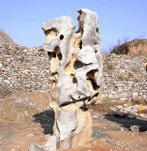 江苏南通哪里的太湖石假山最好图片