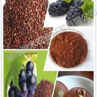 植物提取原花青素葡萄籽提取物95
