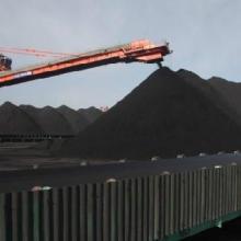 供应5000卡优质原煤