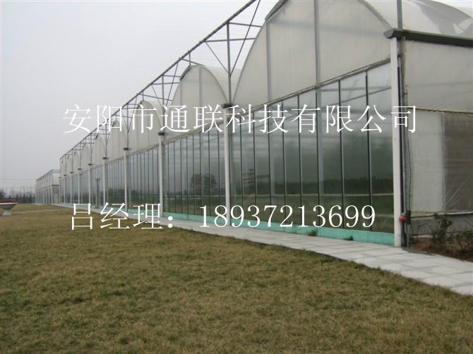 供应智能农业大棚图片
