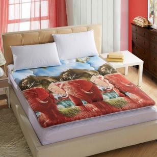 最新款榻榻米软床垫3D加厚床垫床褥图片
