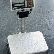 供应FS-i系列防水檢重秤批发