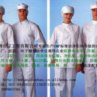 供应GMP洁净服静电服隔离服大褂防护服 图片 效果图