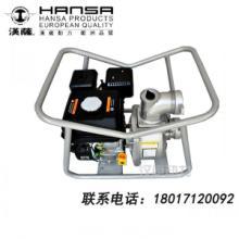 供应便携式汽油水泵