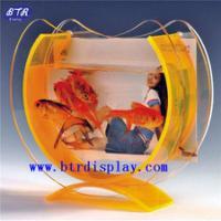 供应亚克力小形鱼缸 有机玻璃挂壁式鱼缸 压克力相框鱼缸