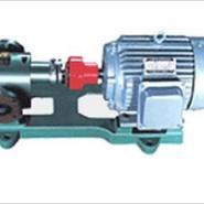 2CG高温齿轮泵图片