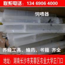 供应深圳蜂蜜蜂具图片