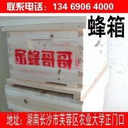 供应长沙七框蜂箱 十框蜂箱 意蜂箱 摇蜜机 養蜂工具 巢框 巢础 蜂产品 蜂蜜