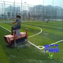 供应河南焦作足球场草皮,假草坪,仿真塑料草坪图片