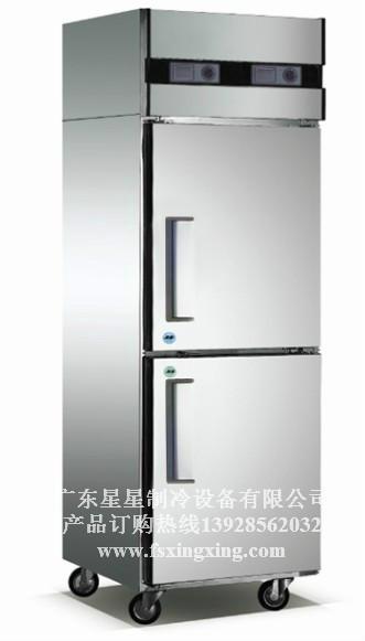 供应广东星星冷柜单温冷柜两门D500E2-G