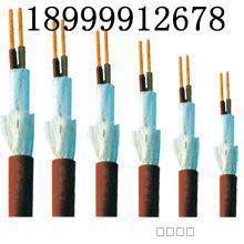 供应高新区屏蔽双绞线,高新区屏蔽双绞线生产厂家,高新区屏蔽双绞线批发商