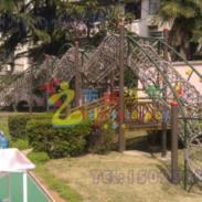 大渡口区爬网系列玩具图片