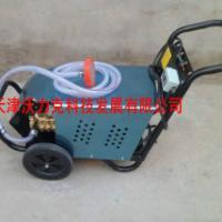 供应北京WL2716根雕清洗机