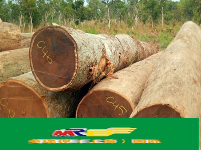 供应进口木材代理商检图片