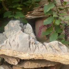 供应河北天然奇石,河北保定景观石,河北天然奇石价格