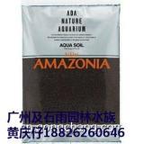 大量批发正品ADA水草批发/正品ADA水草泥,沉木杜鹃根