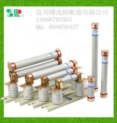 熔断器图片/熔断器样板图 (3)