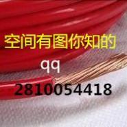 供应12电线管55铜芯管