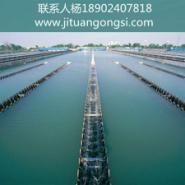 崇州环境评价图片