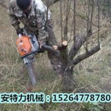 供应挖树机   老品牌   物美价廉