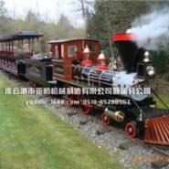 轨道蒸汽火车观光小火车图片