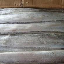 供应进口冷冻水产品带鱼