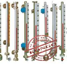 供应GPM-CF01系列磁翻板液位计图片