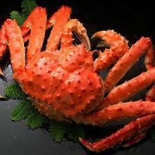 供应帝王蟹