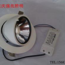 供应新款嵌入式LED象鼻COB射灯20/30W适合服装,家具,珠宝专卖等商业照明批发