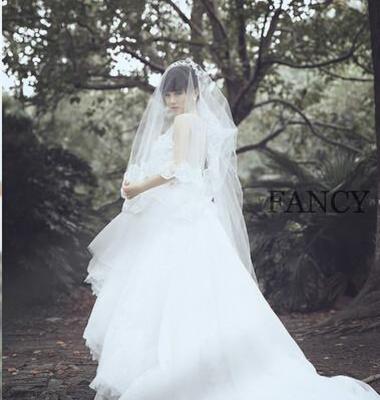 婚纱摄影图片/婚纱摄影样板图 (1)