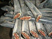 供应沈阳废旧电缆回收铜芯电缆线回收 沈阳铜芯电缆回收图片